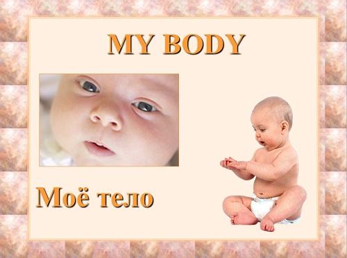 Презентация «My Body»
