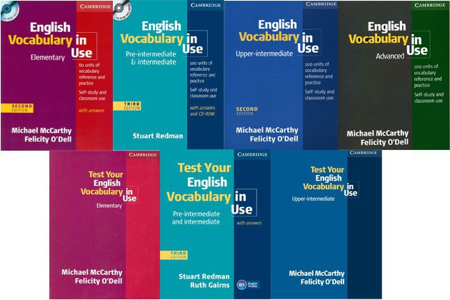 english vocabulary in use books